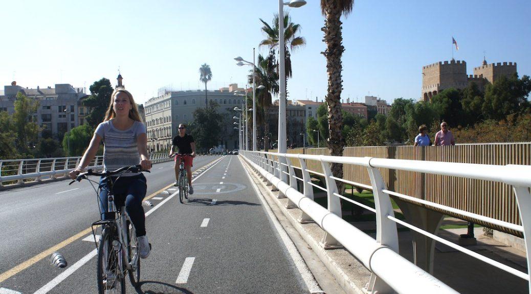Pont de Fusta, València